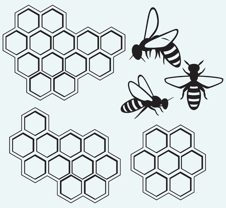 Bees on honey cells isolated on blue batskground  イラスト・ベクター素材