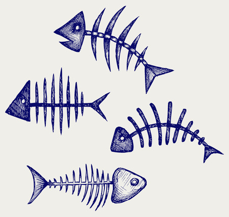 Fischknochen Doodle Stil Standard-Bild - 29869912