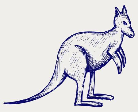 gazing: Kangaroo  Doodle style