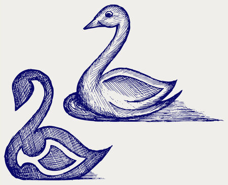 Swan sign  Doodle style Vector