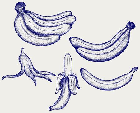 peeled banana: Bunch of bananas, peeled banana and banana peel Illustration