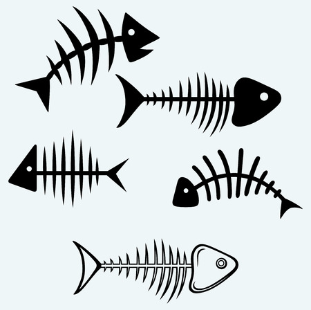 illustration of black fishbone: Fish skeleton  Image isolated on blue background