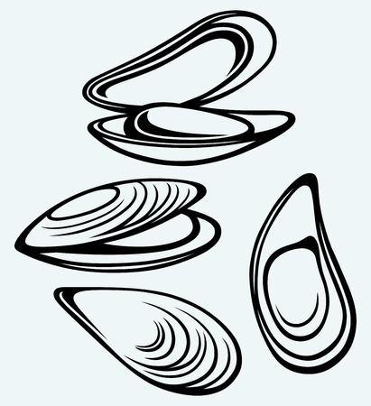 青色の背景に分離された調理のマッスル (ムール貝イメージ