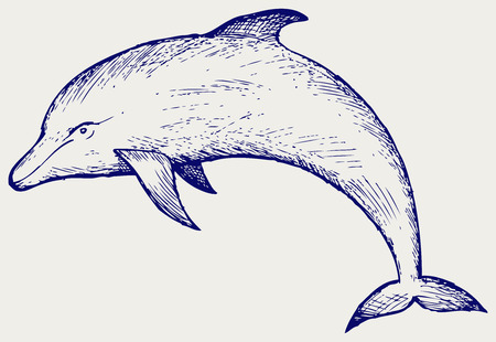 linework: Beautiful dolphin jumping in the water. Doodle style Illustration