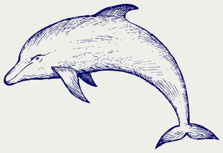 Hermosa delfín que salta en el agua. Doodle estilo Foto de archivo - 37002103