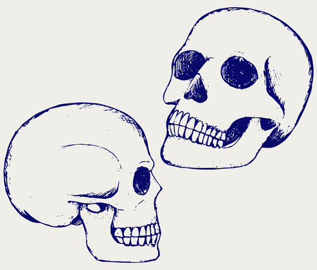 bleak: Human skull . Doodle style Illustration