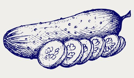 linework: Cucumber and slices. Doodle style