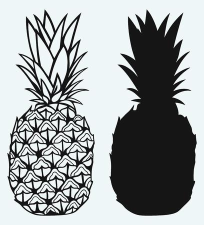 Lekkere rijpe ananas geïsoleerd op blauwe achtergrond Stockfoto - 37003052