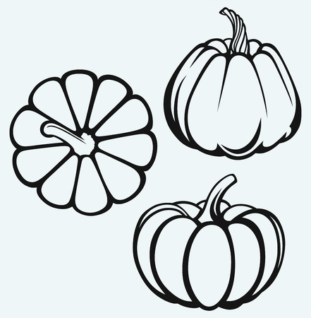 Pumpkins isolated on blue background