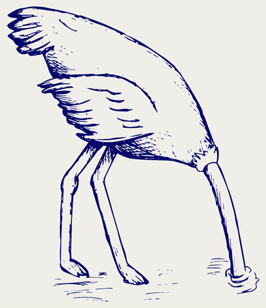 burying: Ostrich burying its head in sand. Doodle style Illustration