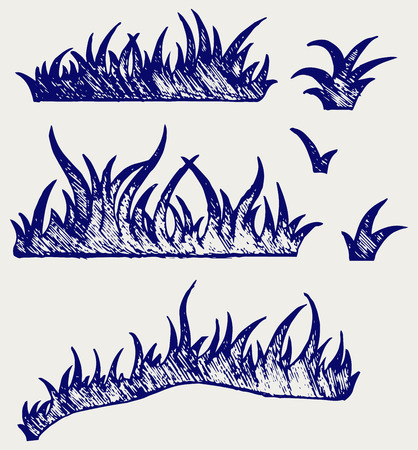 grass blade: Silhouette grass. Doodle style