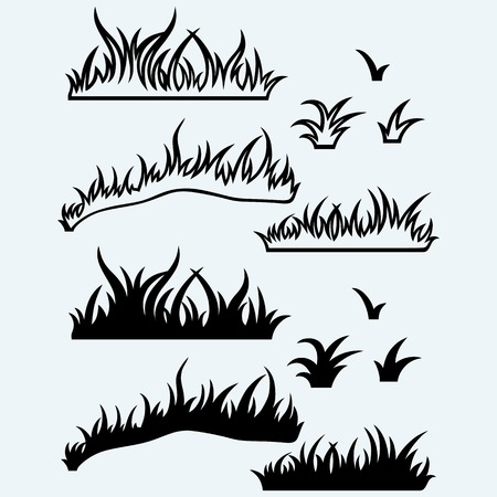 grass blades: Silhouette grass. Isolated on blue background