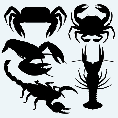 crustaceans: Set crustaceans. Isolated on blue background. Vector silhouettes Illustration