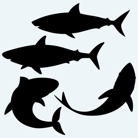 Set shark. Isolated on blue background. Vector silhouettes Stock Illustratie