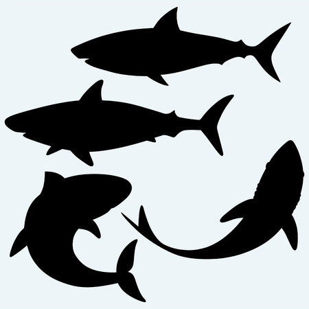 Set shark. Isolated on blue background. Vector silhouettes Vettoriali