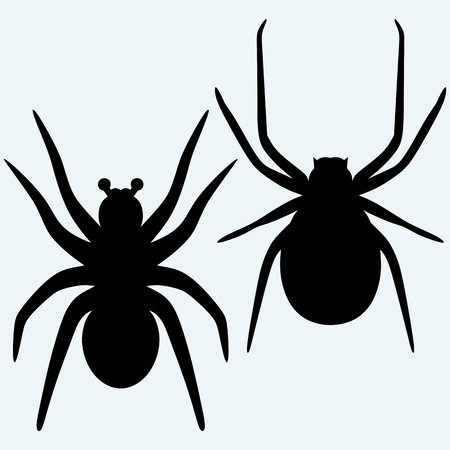 spidery: Set spider icon. Top, side and front view. Isolated on blue background. Vector silhouettes