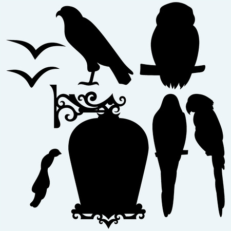 seagulls: Set Birds: eagle, owl, parrots and seagulls. Isolated on blue background. Vector silhouettes Illustration