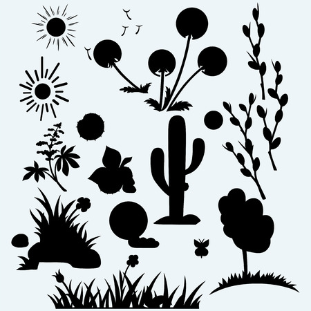 pussy: Set plants. Grass with flowers, dandelions, horse-chestnut, cactus in desert and pussy willow branches. Isolated on blue background. Vector silhouettes