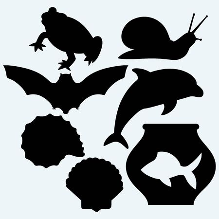 jumping fish: Dolphin jumping, fish in aquarium, frog, bat, garden snail and sea snail. Isolated on blue background.