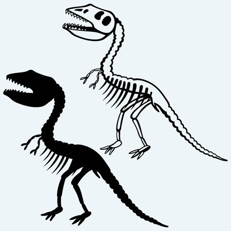 paleontological: Tyrannosaurus skeleton. Isolated on blue background. Vector silhouettes