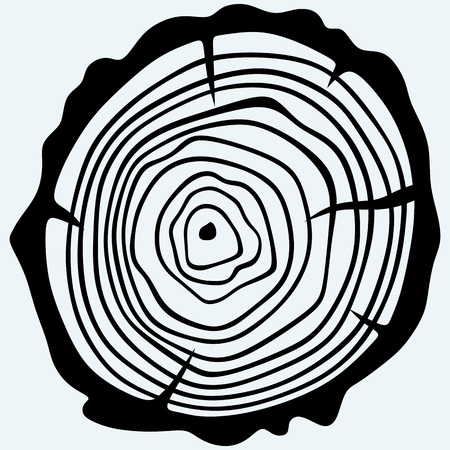 sawed: Cross section of tree stump. Isolated on blue background. Vector silhouettes