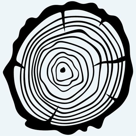 tronco: Sección transversal del tronco de un árbol. Aislado en el fondo azul. siluetas del vector