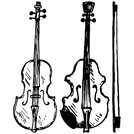 Violin, Musical string instrument. Isolated on white background.