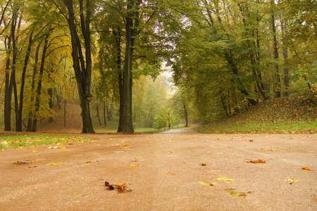 Pathway in the autumn park Stock Photo - 9584599