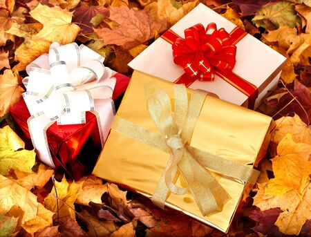 Autumn still life with group gift box. Outdoor. Stock Photo - 5722815