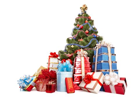 Christmas tree and group gift box. Isolated. photo