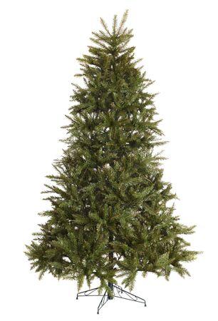 Grüne Tanne Weihnachtsbaum ohne Dekoration. Isoliert.