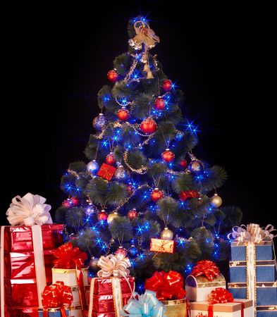 fur tree: Christmas tree and group gift box. Isolated.