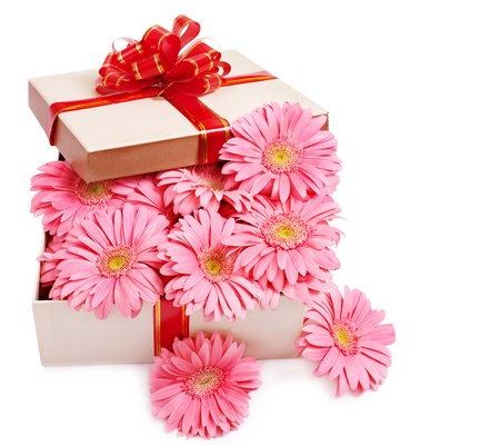 herbera: Gift box with flowers. Isolated.