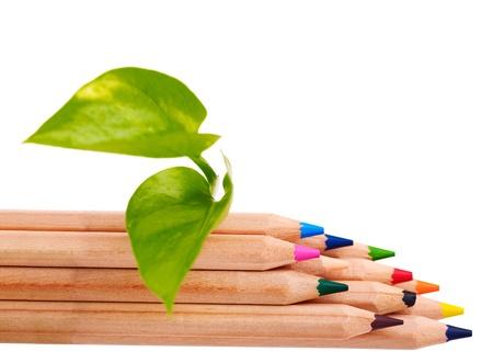 educacion ambiental: Lápices de colores concepto. Utensilios de escritura.