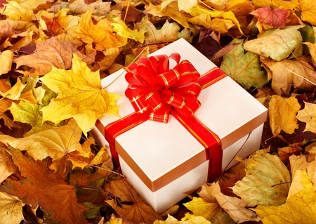 Gift box in fall foliage. Autumn holiday. photo