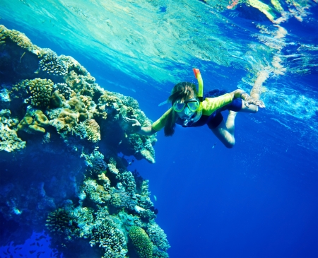 Group of coral fish in  blue water.Scuba diver. Standard-Bild