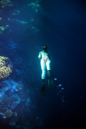 Woman and coral fish in blue water.Scuba diver. photo