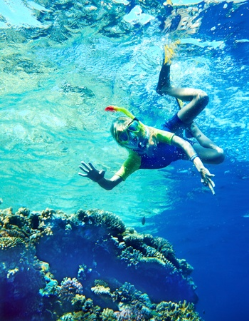 snorkling: Group of coral fish in  blue water.Scuba diver. Stock Photo