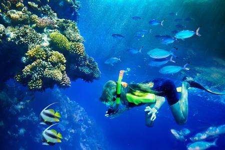 青い水の中のサンゴ礁の魚たちのグループです。スキューバ ダイバー。