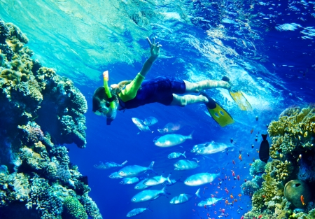 snorkeling: Child diver under water with group coral fish.