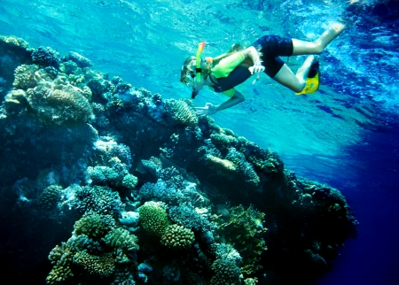 actinia: Ni�o buzo con el grupo de peces de coral en aguas azules.