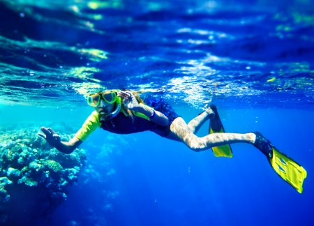diving: Child scuba diver with group coral fish in  blue water.