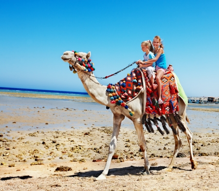 Tourists children riding camel  on the beach of  Egypt. Stock Photo