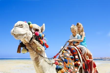 camello: Turistas ni?montando en camello en la playa de Egipto. Nitidez en un camello.