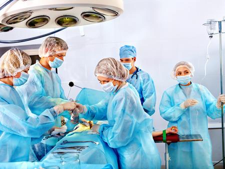 수술실에서 직장에서 팀 외과 의사.