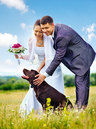 Bride and groom wedding with dog summer outdoor. photo