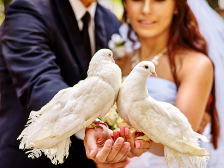 white wedding: Bride and groom holding dove in park outdoor. Sharpness on birds. Stock Photo