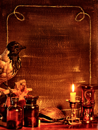 scrying: Halloween decor  border with raven. Vintage stile.