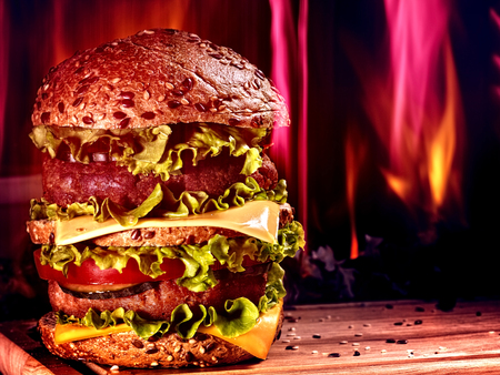 double oven: Huge double patty hamburger  board on background of fire.