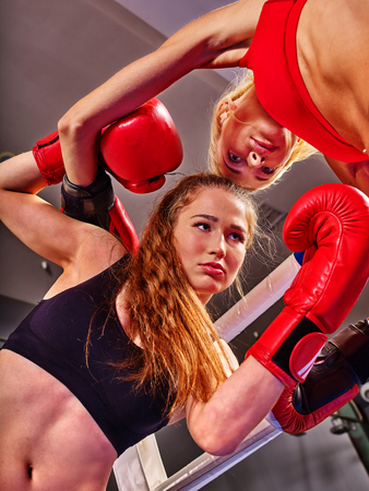showgirl: Two women boxer wearing red gloves to boxer in ring. Bottom view boxer women.